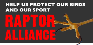 Raptor Alliance: Help us protect our birds and our sport